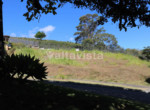 7 Lote en Colinas de Montealegre #11 GR