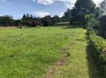 Las Heliconias Colinas de MonteAlegre (3)