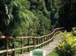 Hacienda Gregal Curridabat (2)