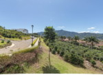 Carao Colinas de Montealegre (13)