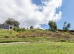 La Ceiba Colinas de Montealegre (14)